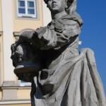 Ogród pałacowy, Muzeum Historyczne we Wrocławiu
