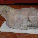 Lew z opactwa benedyktynów na Ołbinie, Muzeum Historyczne we Wrocławiu