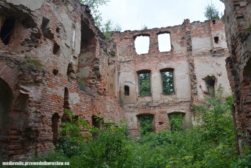 Zamek w Owieśnie